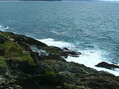 view north from Muttonbird Island by <b>EcologistGreg</b> ( a Panoramio image )