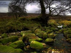 there is such a place / wicklow / ireland by <b>Rafal Ociepka</b> ( a Panoramio image )