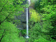 Latourell Falls by <b>Aaron Nuffer</b> ( a Panoramio image )