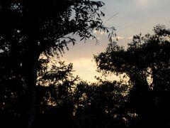 atardecer en mi casa by <b>edualgutcha</b> ( a Panoramio image )