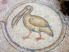Mosaic floor, Villa of Birds, Caesarea (11-FEB-06) by <b>Ilya Borovok</b> ( a Panoramio image )