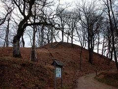 Dubingiai mound by <b>Renatorius (Reno)</b> ( a Panoramio image )