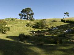 Hobbiton: The movie set by <b>GandalfTheWhite</b> ( a Panoramio image )