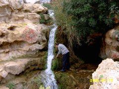 tt by <b>Tarek Garouda</b> ( a Panoramio image )