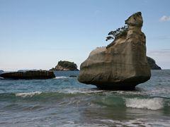 NZ / Hahei - Cooks Bay by <b>bulach</b> ( a Panoramio image )