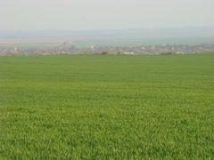 Semlacu Mare - vedere de langa Sumig - 5.4.2009 by <b>Dan Movila</b> ( a Panoramio image )