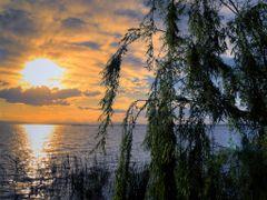 Sol de poniente en tierra de levante by <b>mi§oad</b> ( a Panoramio image )