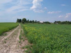 Вид на деревню Дежки by <b>Igor Kozolup</b> ( a Panoramio image )