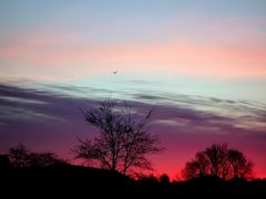 My sunrise by <b>ka9894</b> ( a Panoramio image )