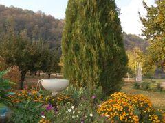 Jardin en Villa Baviera by <b>Luis Alfonso Gutierrez</b> ( a Panoramio image )