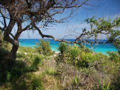 Bermuda by <b>Kimberly Komers</b> ( a Panoramio image )