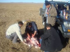 Hunting in Mongolia by <b>a_eura</b> ( a Panoramio image )