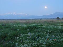 Evening field by <b>Damira Music</b> ( a Panoramio image )