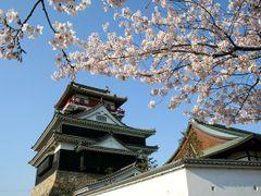 Kiyosu Castle & Japanese cherry by <b>magechin</b> ( a Panoramio image )