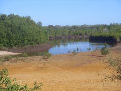 mangrove direction mandanivatsy by <b>m-e-k</b> ( a Panoramio image )