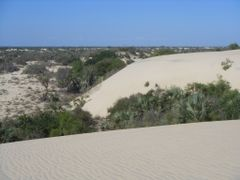 behind the dunes by <b>m-e-k</b> ( a Panoramio image )