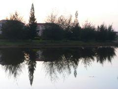 Taman Sepang Putra at Dawn by <b>Soon-tin Lim</b> ( a Panoramio image )