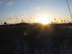 IMG_3466 by <b>Esa-Matti</b> ( a Panoramio image )
