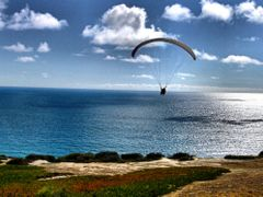 Paragliding at Torrey Pines by <b>SCOTT CAMERON</b> ( a Panoramio image )