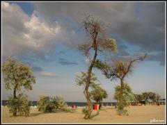 Plaja din Mamaia by <b>gabiavram</b> ( a Panoramio image )