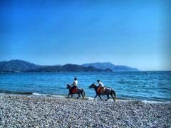 Kumsalda atlar (Horses at the beach) by <b>Mustafa-Fethiye/TURKIYE</b> ( a Panoramio image )