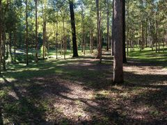 Picnic Area, Daisy Hill Conservation Park by <b>Wigz</b> ( a Panoramio image )