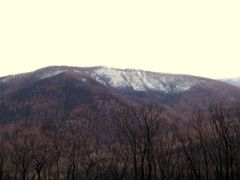 Veiw from lookout on Lake Mountain by <b>Goldnbrownman</b> ( a Panoramio image )