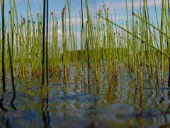 Rantavesissa by <b>junkohanhero</b> ( a Panoramio image )