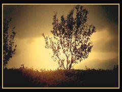 Sunset  by <b>Erika R.</b> ( a Panoramio image )