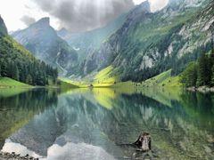 Beim Seealpsee © by Sunpixx by <b>Sunpixx</b> ( a Panoramio image )