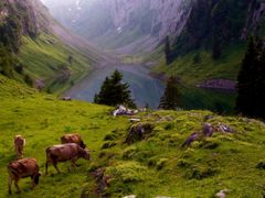 pitoresque...malerisch... by <b>Fernand Metzger</b> ( a Panoramio image )