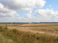 У развилки дорог М6 и Р114 by <b>Maslov V.G.</b> ( a Panoramio image )