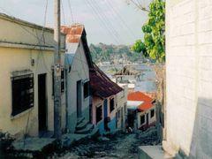 Flores (1995) by <b>Tim Jansa</b> ( a Panoramio image )