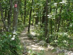 Mina Sauk Falls Trail by <b>couter</b> ( a Panoramio image )