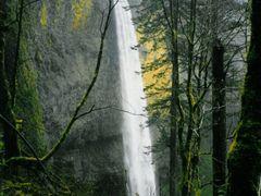 Latourell Falls by <b>Pamela Elbert Poland</b> ( a Panoramio image )