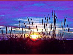 PUESTA DE SOL, COLORES DEL ATARDECER, para mi amiga LOURDES CANC by <b>Teresa.uy</b> ( a Panoramio image )