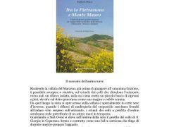 Faenza - Il colle di S.Giorgio in Ceparano nella copertina del l by <b>esse est reminisci (SAVE PANORAMIO)</b> ( a Panoramio image )