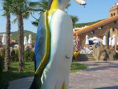 Elenite: Aquapark -  penguin shower by <b>Maciejk</b> ( a Panoramio image )