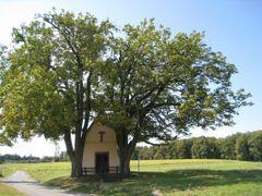 Hessenthal, Herrnbildkapelle by <b>nasenbaerdietzenbach</b> ( a Panoramio image )