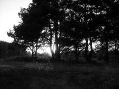 Pomnik (wrzesien 2009) by <b>Pawel Pall AEvar</b> ( a Panoramio image )
