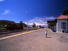 Robin on Graaff-Reinet station by <b>Graham Hobbs</b> ( a Panoramio image )