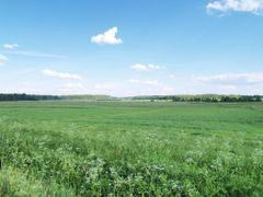 Lobergu plavas (Lobergu meadowy) by <b>Uldis Osis</b> ( a Panoramio image )