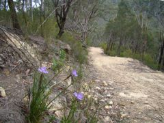 The climb up from Bedford Creek by <b>marhleet</b> ( a Panoramio image )
