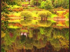 ?szi hangulat  (IRORSZ?G ,Glendalough magyarul ,,A K?t T? V?lgy by <b>vterezia</b> ( a Panoramio image )