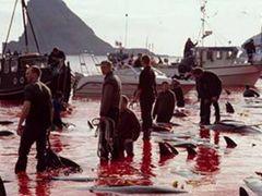 danimarka-Faroe Adalar? by <b>koparal,Kafkasyal?-Turkei</b> ( a Panoramio image )