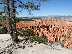 Bryce Canyon by <b>liz98</b> ( a Panoramio image )