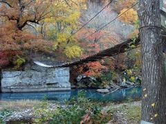 Swinging foot bridge over the Mulberry River by <b>Geezer Vz</b> ( a Panoramio image )