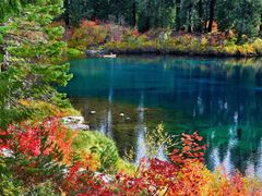 Fall Color On Clear Lake by <b>Ron Cooper</b> ( a Panoramio image )