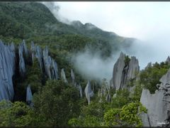 Borneo, Mulu, Pinalces by <b>GallienF</b> ( a Panoramio image )