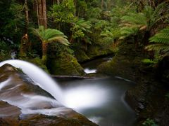 Liffey falls by <b>danfromtas</b> ( a Panoramio image )